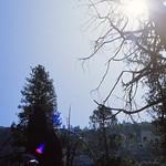 1983_JULY-Yosemite2-FUJIRD100-RollC_0033 thumbnail