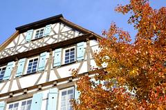 Maulbronn im Herbst (michab100) Tags: house tree 35mm herbst haus sheet bltter baum mib fachwerk michab100 fujifilmxe1 mibfoto