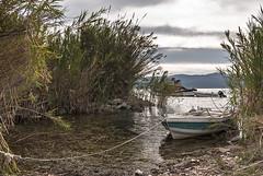 Trichonida (Spiros_Gioldasis) Tags: autumn lake water boats boat branch pentax greece twig spiros fishboat ελλάδα agrinio pentaxk10 aitoloakarnania αιτωλοακαρνανία αγρίνιο westgreece σπύροσ trichonida γιολδάσησ trichonidalake spirosgioldasis gioldasis
