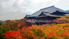 At The Buddhist Temple: Main Hall (Pete Toshio) Tags: park travel autumn japan forest canon landscape temple eos rebel kyoto kiss colorful buddhist  historical prefecture kiyomizudera x4 550d kyotoshi heritege t2i petertoshiro