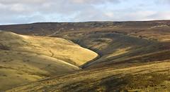Brown Knoll (l4ts) Tags: landscape heather derbyshire peakdistrict darkpeak moorland mountfamine brownknoll riversett minoltaamount britnatparks