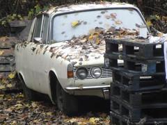 1964 Rover 2000 (GoldScotland71) Tags: 2000 rover 1960s 1964 p6 gev251b