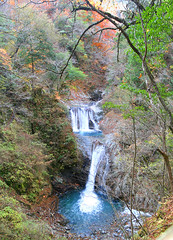 IMG_9827-IMG_9829 (youkaine) Tags: november autumn red orange mountain yellow japan forest river waterfall hiking autumncolors foliage 日本 紅葉 秋 山 yamanashi 11月 川 ハイキング 山梨 nishizawakeikoku 葉っぱ 山梨県