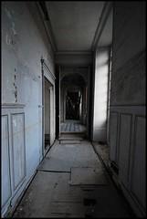 Chteau des Singes (LulaTaHula) Tags: france castle abandoned lost europe decay empty forgotten urbanexploration mansion derelict ue urbex chteaudessinges