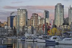 Vancouver skyline from across False Creek (albertusmagnus) Tags: sunset reflection vancouver marina falsecreek vancouverskyline albertusmagnus novemberevening flickrdiamond nikkor70300mmlens nikond5000 blinkagain vancouveratsunset