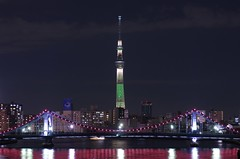 Tokyo Sky Tree with Christmas Specal Lighting (ELCAN KE-7A) Tags: christmas sky tree japan tokyo pentax illumination    2012 k5