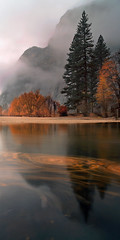 November Rain (Joe Ganster) Tags: california park ca autumn trees sunset mist mountain mountains fall nature water colors leaves fog forest reflections river landscape us long exposure natural merced joe sierra national valley yosemite swirl sierras transition changes swirling ganster