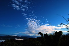 Jiujiu Feng  cloud sea 九九峰雲海 (etmhb) Tags: sea cloud 南投 雲 山 feng 光 雲海 藍 竹林 jiujiu 霧 晨 九九峰 九九峰雲海