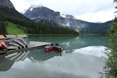 Emerald Lake Reflections (Cole Chase Photography) Tags: canada canon reflections jasper britishcolumbia banff t3i emeraldlake yohonationalpark