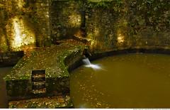 287 - The Reservoir (Ata Foto Grup) Tags: longexposure autumn fall water leaves stone forest turkey leaf türkiye istanbul reservoir su belgrad eyüp orman sonbahar yaprak taş belgradormanları belgradormanı rezervuar