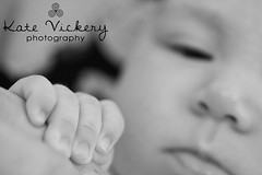 (K. Vickery) Tags: portrait monochrome dof hand little sweet newborn bany