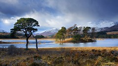 Loch Tulla (Christopher Swan) Tags: blue trees winter sun snow water yellow canon scotland highlands snowy pines lochtulla stormyskies bridgeoforchy