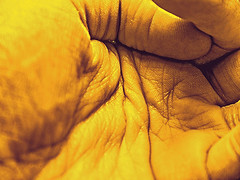 plieges (hurasima) Tags: color texture textura rayas lines yellow jaune hand ride skin stripes main palm amarillo gelb mano forms formas pied palma wrinkles crease footprint peau paume lineas haut huella fus piel 足 手 falte runzel textur 行 しわ テクスチャー 皮膚 plieges