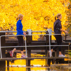 Golden girls (Steve-h) Tags: pink november blue autumn trees ireland girls dublin brown white black green art tourism yellow canon reflections eos gold design canal europa europe zoom candid blondes eu tourists autumnleaves telephoto recreation railings ponytails joggers aerlingus allrightsreserved 2012 lockgate baggotstreet steveh canonef100400mmf4556lisusm canoneos5dmkii canoneos5dmk2 november2012 autumn2012 sluciegates