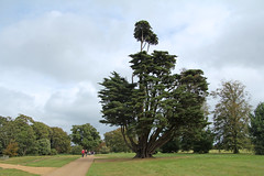 Osborne House - East Cowes Isle of Wight (England) (Meteorry) Tags: park county uk greatbritain england house tree castle english garden island europe maya unitedkingdom britain path royal jardin september calender isleofwight solent british residence palazzo arbre chteau princealbert queenvictoria chemin osborne 2012 eastcowes le summerresidence meteorry italianrenaissance thomascubitt