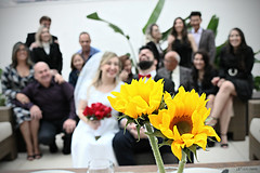 Fernanda e Vinicius - Famlia (lcamargo.dm) Tags: casamento marriage love photo fotografia design famlia family wedding