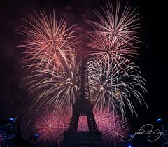fireworks of French National Day 14 july 2016 (mangMangW) Tags: night paris france eiffeltower fireworks toureiffel nuit feudartifice bastilleday frenchnationalday ftenationalefrancaise nikond750 sigma50mmf14art