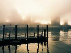 Foggy Morning, Brisbane (stephenk1977) Tags: australia queensland qld brisbane fog foggy misty cbd skyline southbank river iphone6 vsco g2 preset