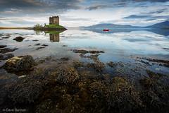 Castle Stalker (David Hannah) Tags: scotland appin sea argyll highlands summer morning
