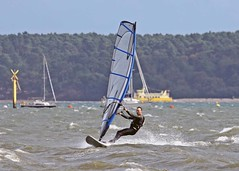 Aug0315a (Mike Millard) Tags: hamworthypark pooleharbour windsurfers
