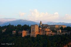 Alhambra y Palacio de Carlos V (Juan Miguel) Tags: tamron1750 sonyalpha65 europe europa spanien spain spagne espaa andaluca granada arquitectura architecture arboles trees