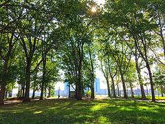 East River Park. NYC. (Carl Mikoy) Tags: east park new york city summer shade trees sky tai chi manhattan eastside newyorkcity
