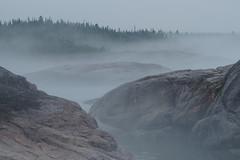 Rivage, prs de Rivire-au-Tonnerre (Patrice StG) Tags: qubec voyage trip travel journal fog brouillard brume ctenord northshore golfestlaurent gulf stlawrence stlaurent sooc shore rivage