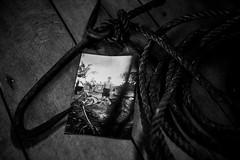 crocodile hunting (VioletHippie) Tags: malaysia borneo banting iban headhunter d750 fullframe nikon photo color crocodile hunting amo fune foto coccodrillo strumenti caccia mestiere antico
