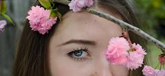 Oana (pod') Tags: hapiness eyes yeux regard fleurs
