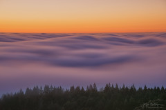 Fog Dance (jojo (imagesofdream)) Tags: marin county clouds fog san francisco bay area mountain sunset colors california summer sundown moment slow shutter movement escaype