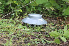 UFO has Landed (Richard Elzey) Tags: ufo alien unidentifiedflyingobject spaceship space craft foreign star ship anotherplanet creatures martians mars conquest attack closeencounter contact invasion people galaxy universe visitors