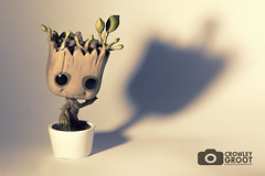 Groot (Crowley Groot) Tags: toys muecos arbol tree groot guardianesdelagalaxia marvel comic shadows sombras canon interior indoor shot minimalismo profundidaddecampo bokeh fondoblanco guardiansofthegalaxy merchandising