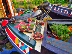 Plants on the Barge (pajafar) Tags: barges regentscanal plants kingscross london canal colorful