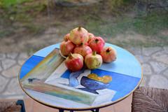 Pomegranates (RobW_) Tags: pomegranates verandah table tsilivi garden zakynthos greece sunday 25sep2016 september 2016