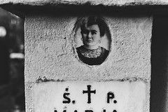 + (bolandrotor) Tags: old portrait blackandwhite bw grave faces memories poland polska krakow tradition allsaintsday wszystkichwitych passaway rustical krakoff