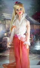 Vintage Mod TNT Barbie from Sear's with Blue Eyeliner (The doll keeper) Tags: blue vintage mod barbie tnt eyeliner