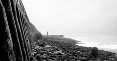 The Wall (Jelltex) Tags: seawall englishchannel folkestone auumn jelltex jelltecks