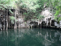 2012-05-31 Cenote Yokdzonot - Yucatan (6) (Alain Berthelot) Tags: water mexico hole sink maya yucatan well mayan cenote mexique sinkhole 2012 waterwell yokdzonot