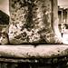 The Lions of Ephesus