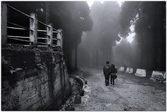 Only Love l Darjeeling (mann_D5000) Tags: road two people blackandwhite mist tree love landscape path getty tamron darjeeling suman peoplelandscape sumon d5000