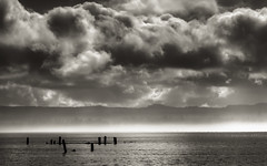 fog line across the bay (Steven Schnoor) Tags: november sky bw usa art nature water fog sepia clouds threatening location hills pilings washingtonstate toned thebay tinted 2012 graysharbor threateningsky schnoor tidewater hoquiam simplelogic fogline threateningclouds seriousclouds