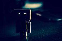 Eyes (Unforgotten_Loui) Tags: camera canon 50mm 50 5050 danbo 550d project50 danboard revlotech
