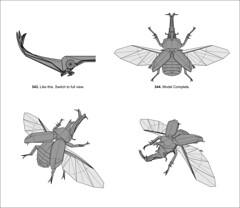 kabutomushi 3.0 final steps (shuki.kato) Tags: paper japanese beetle fold rhinoceros kato shuki kabutomushi allomyrina dichotoma