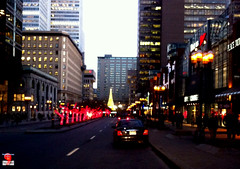 Christmas in Montral 2012 - McGill-College - Ville-Marie iPh20121122 002 (fotoproze) Tags: christmas canada natal weihnachten navidad quebec montreal noel nol natale   nadal 2012 kerstmis jl vianoce nollaig karcsony nadolig boi joulu  boenarodzenie vnoce  crciun        boino