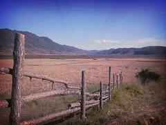 pathar rambrai, rambrai (Joisjohn20) Tags: india nature scenery perspective plain meghalaya westkhasihills nongstoin rambrai flickrandroidapp:filter=rome