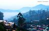One Misty Morning (Sourav RC) Tags: morning india mist nature clouds dawn hill kerala hillstation munnar mistymorning thegalaxy souravrc flickrstruereflectionlevel1