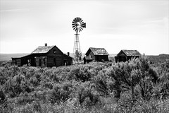eastern oregon (Steven Schnoor) Tags: summer bw white black windmill monochrome june rural canon fence buildings landscape mono wire flora structures sage barbedwire shrubs sagebrush 2012 easternoregon schnoor simplelogic
