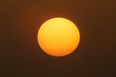 #850D7296 - Like an orange (Zoemies...) Tags: sunset orange beach nature dubai jumera zoemies