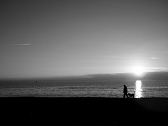 friend... ((rino)) Tags: sea bw dog beach water clouds photo friend flickr mansbestfriend rino