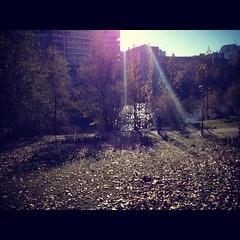 Luz morada. (María Orcajo) Tags: sol rio arboles otoo